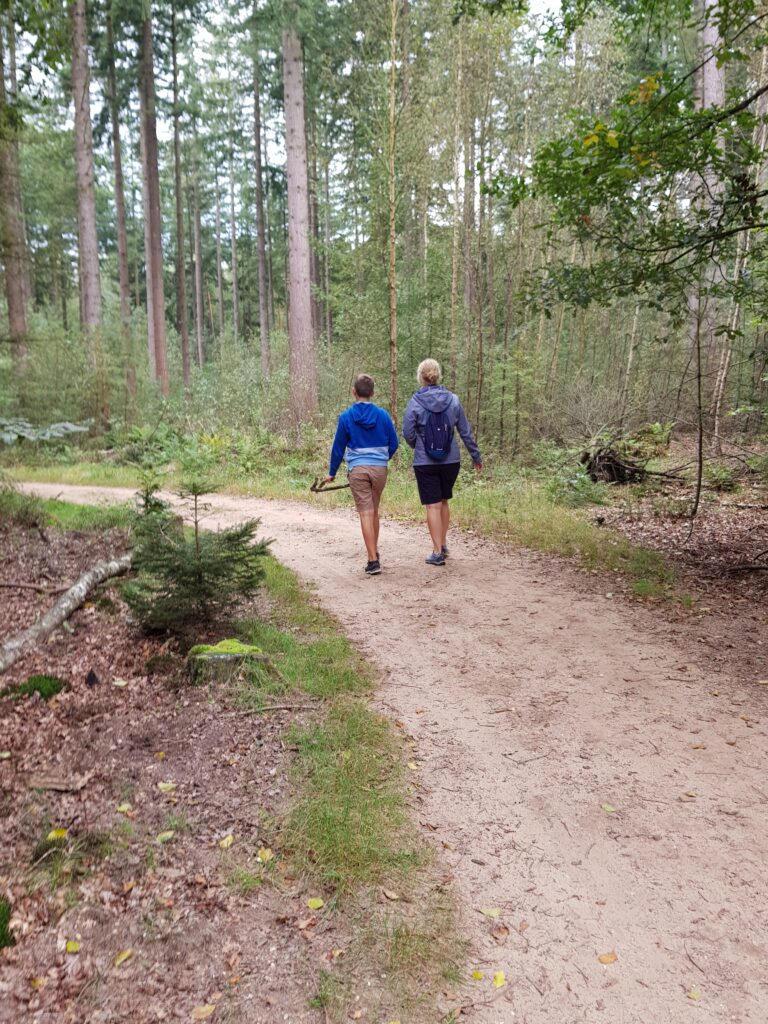 wandelen vlakbij camping de Wildhoeve, Emst