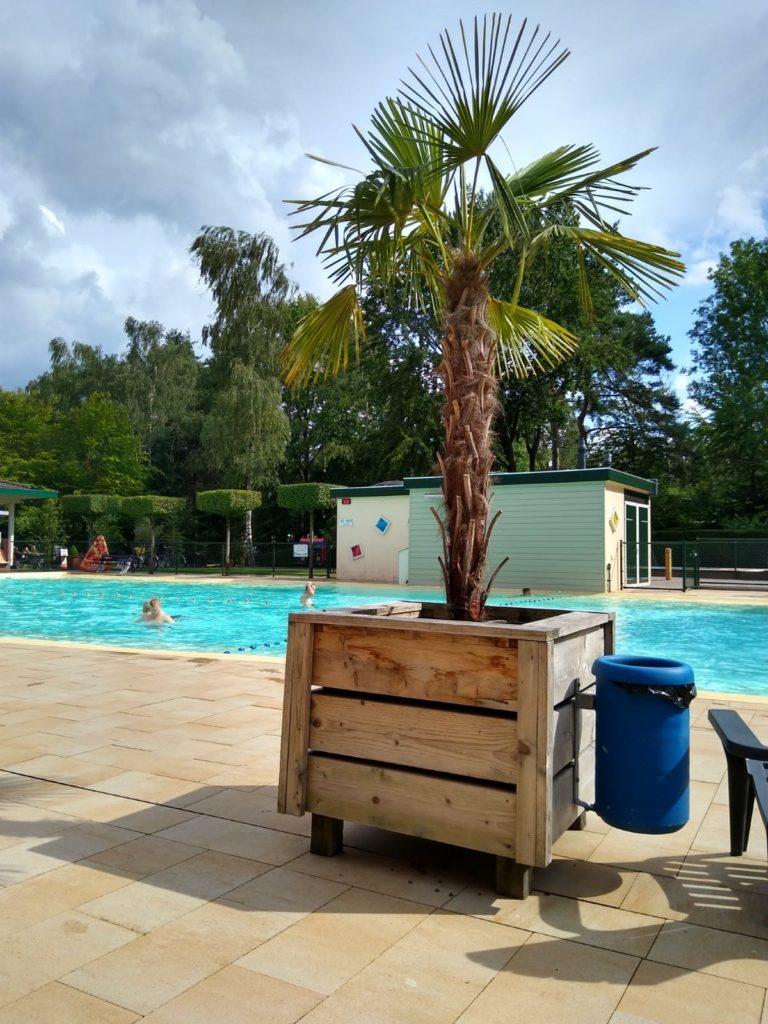 buitenzwembad op camping De Paalberg, Ermelo