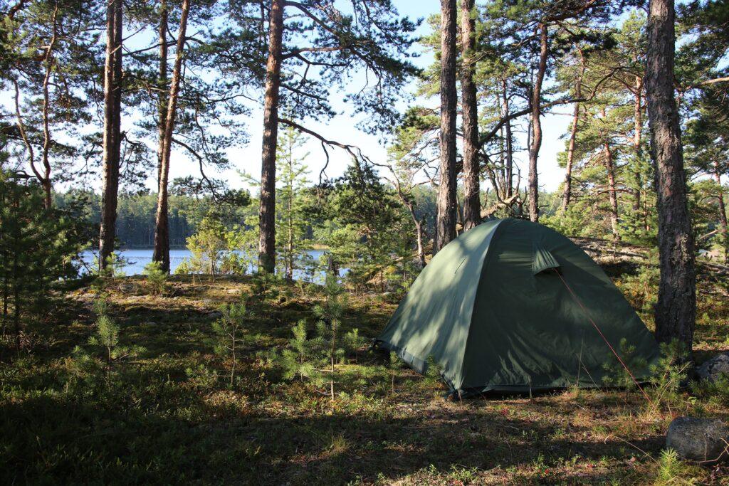 kamperen op een microcamping in het bos