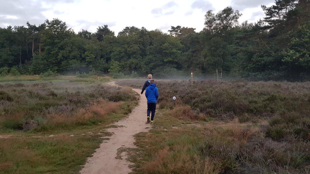 Ochtendwandeling op de Veluwe, wild spotten