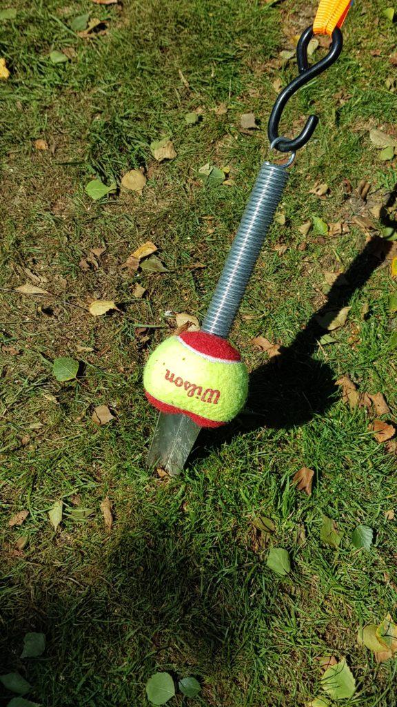 tennisbal over haring