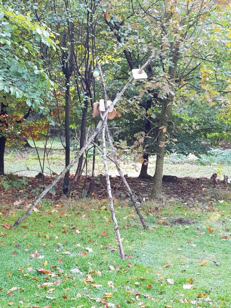 vogelvoederplek-maken-op-de-camping