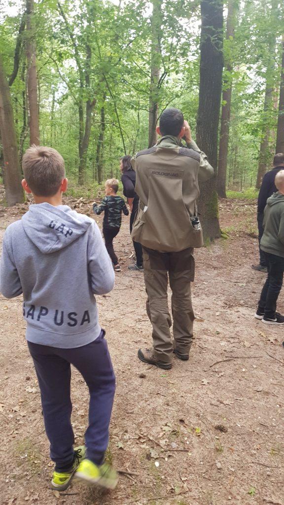 wild spotten op de Veluwe met de boswachter